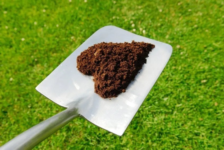 compost_heart