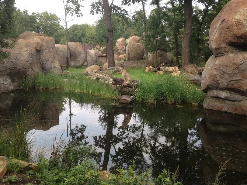 Leipzig Zoo- a natural retreat in the heart of a city 1000 years old