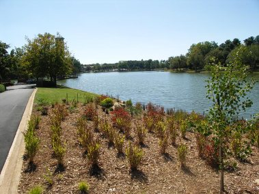earth-design-landscape-architecture-pickens-sc-furman-university-5