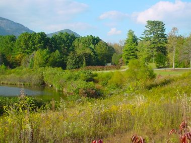 earth-design-landscape-architecture-pickens-sc-cherokee-foothills-national-scenic-byway-3