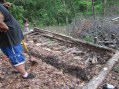 dead logs laid in the area where we will fill with soil and then plant into