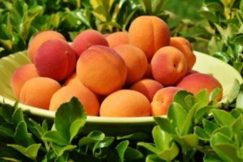 Best Vegan Sources of Calcium - Apricots