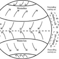 Global Wind Patterns Diagram Pc Power Supply Wiring Systems Illustrating How Hadley Cells Create The Trades Rising Warm Air In Tropics Creates A Void That Is Filled By Coming From Higher