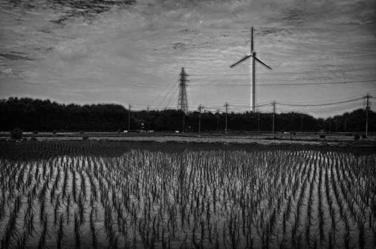 Wind Turbine, Tochigi Japan