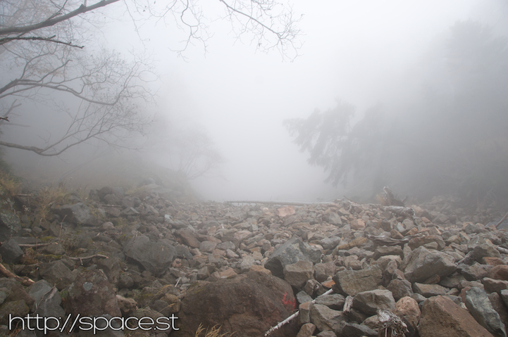 mist encompasses the trail