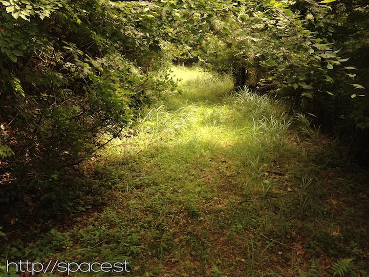 Sasamekura grass path