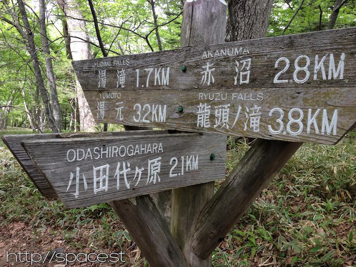 trail crossing Senjogahara