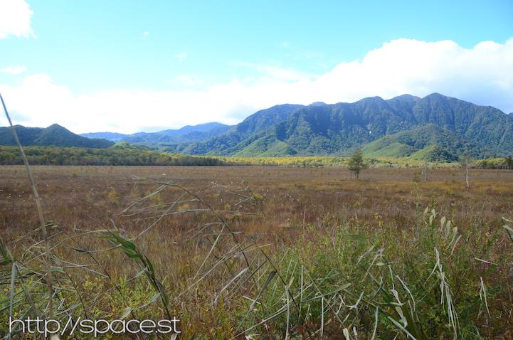 across the marshland Senjogahara