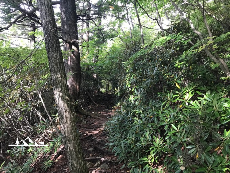 Lake Chuzenji hiking trail