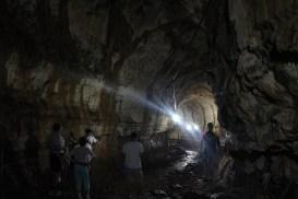 Lava tunnel, Santa Cruz, Galapagos Islands