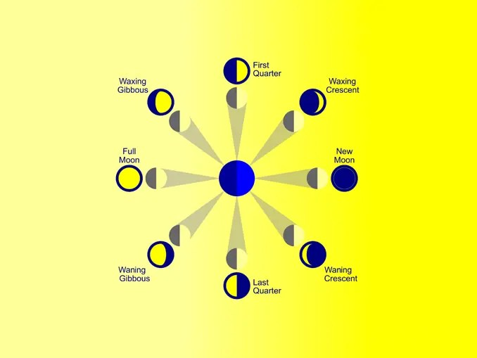 Major Phases of the Moon