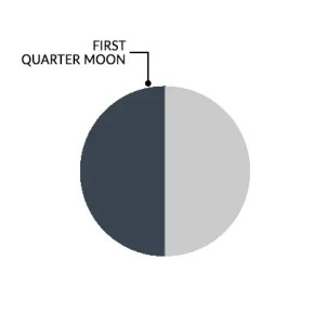 moon phases first quarter moon