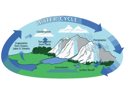 Hydrological Cycle