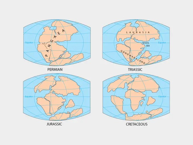photograph relating to Pangea Puzzle Printable known as What Is Pangaea? Piecing Collectively the Supercontinent Jigsaw