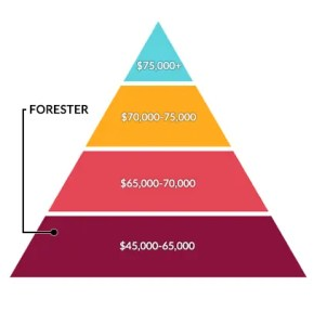 Forester Salary