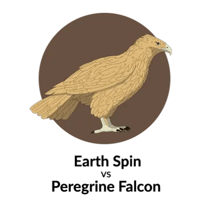 Earth vs Peregrine Falcon