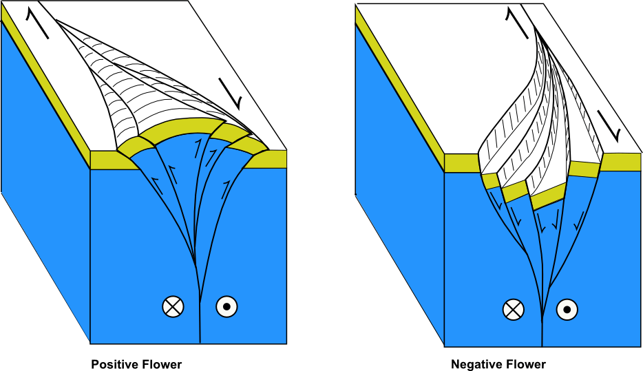 strike slip fault block diagram 2003 honda foreman 450 carburetor gulf of california earthquakes first update jay patton online here is a showing how step overs can create localized compression positive flower or extension negative