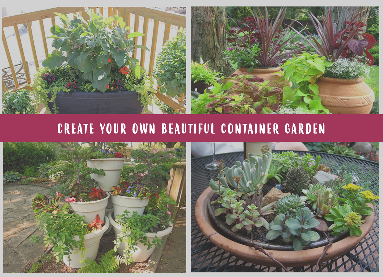 Design Your Own Container Garden Chords