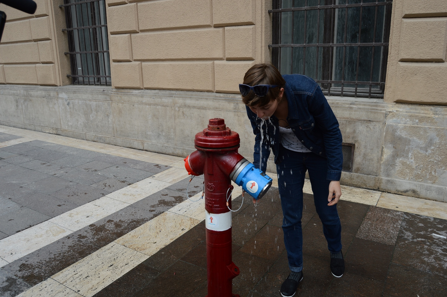 Fire Hydrant Drinking Fountain  Earthly Mission