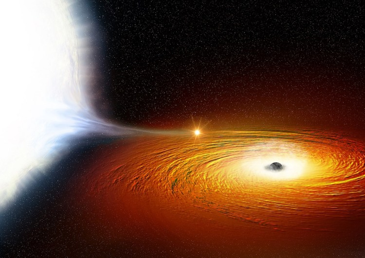 Black hole devouring a white dwarf