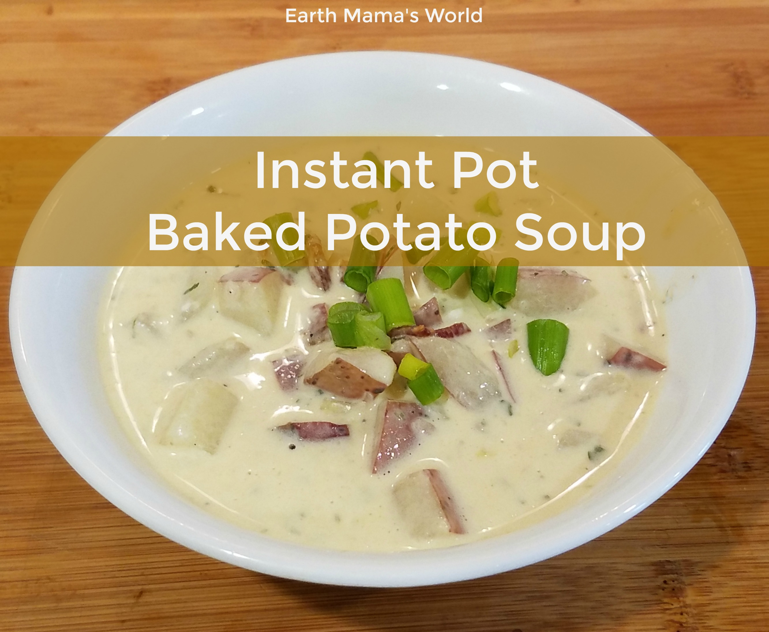 Instant Pot Baked Potato Soup