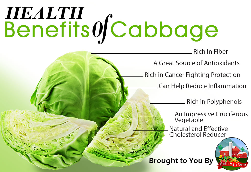 Health-Benefits-of-Cabbage