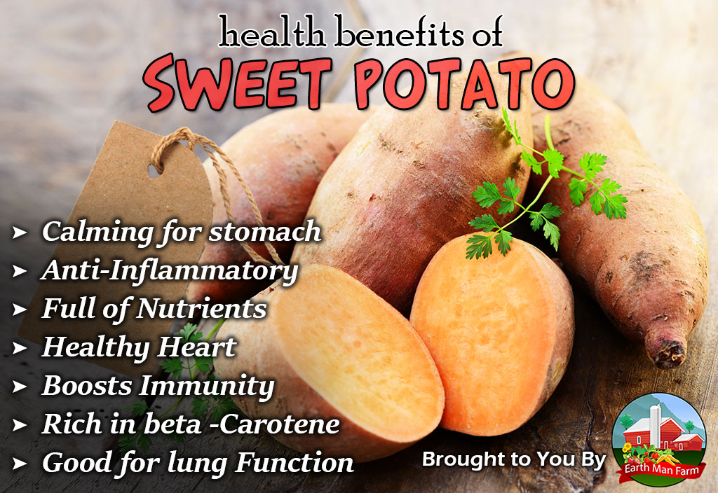 Health-Benefits-of-Sweet-Potato
