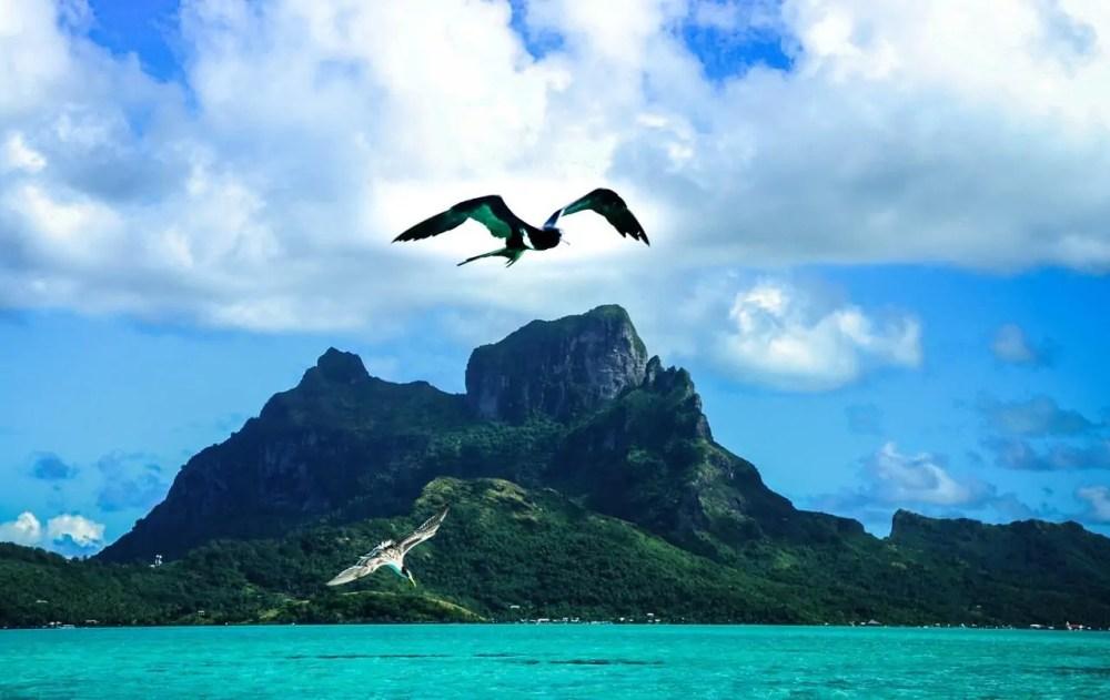 Image Result For Bora Bora Cruises Beautiful Things You Should Know About Amazing Bora Bora Island