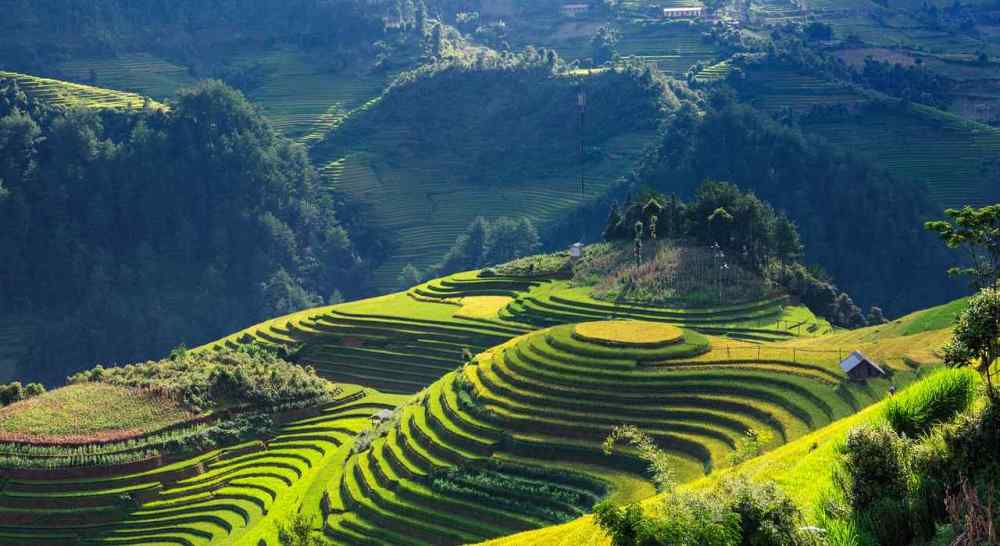 Mu Cang Chai, Vietnam