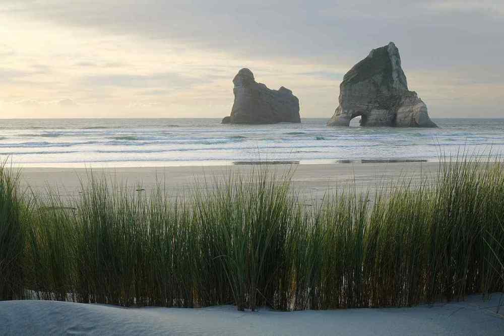 WHARARIKI BEACH, Puponga, New Zealand