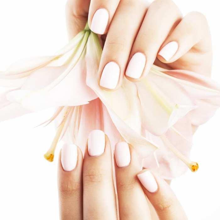 Beauty Package Bioseaweed Gel Manicure