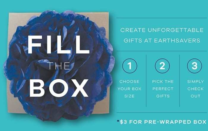 Holiday Fill the Box Gift - Earthsavers Spa + Store