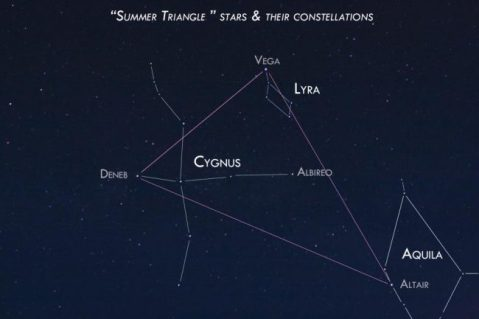 Star field with lines of three constellations and summer triangle drawn on it.