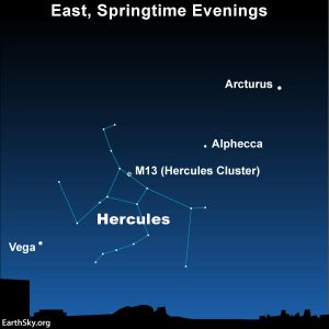 Find Hercules between two bright stars |  Tonight