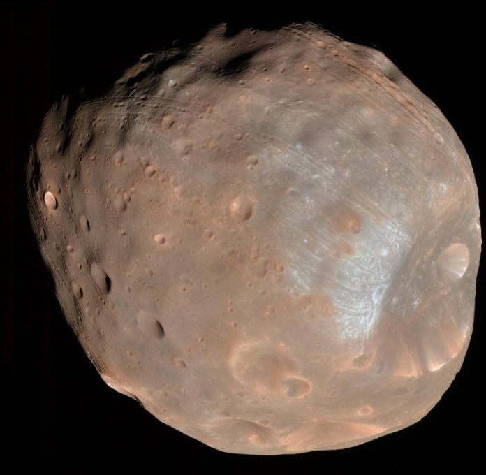 Oval-shaped, pinkish rocky moon with many mostly small craters.