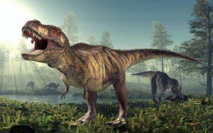 How many Tyrannosaurus rexa lived on Earth?   .     Earth