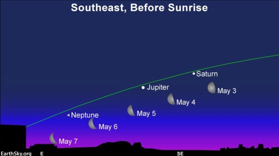 Waning moon goes by the planets Saturn and Jupiter in the predawn/dawn sky.