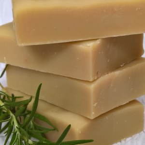 earthsplash rosemary shampoo bar
