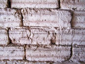 170315 Salar de Uyuni (1)