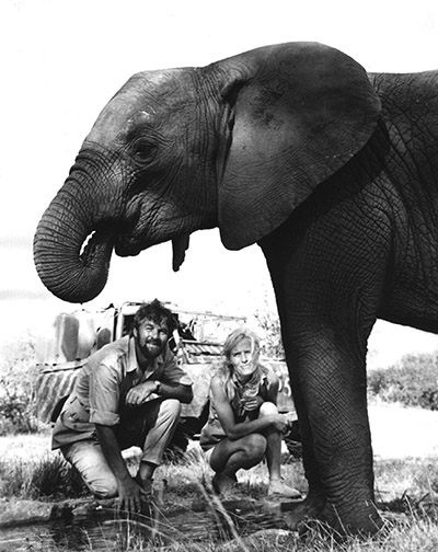 Bill Tavers Virginia McKenna and Pole Pole during the filming of An Elephant Called Slowly c BFF Elephant Tusks Do Not Just Drop Out