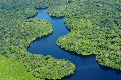 amazon sml 400x267 What can I do to help prevent deforestation in the Amazon?