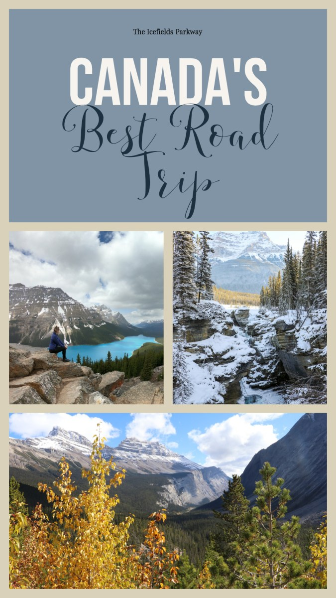 Banff and Jasper Roadtrip! You have to explore the Icefields Parkway!