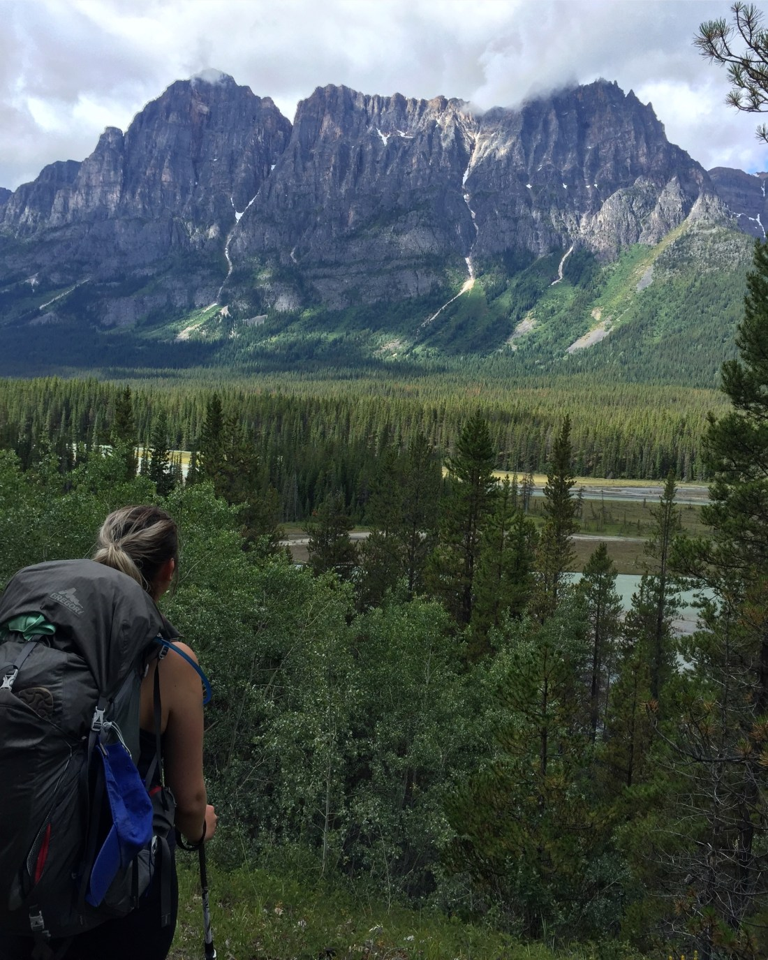 View Halfway Between Big Bend and Athabasca Crossing