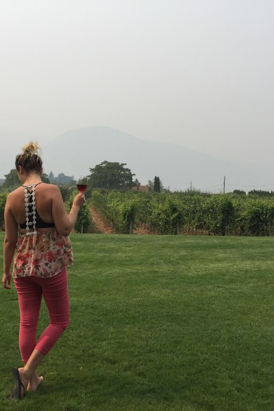 Red Rooster Winery!