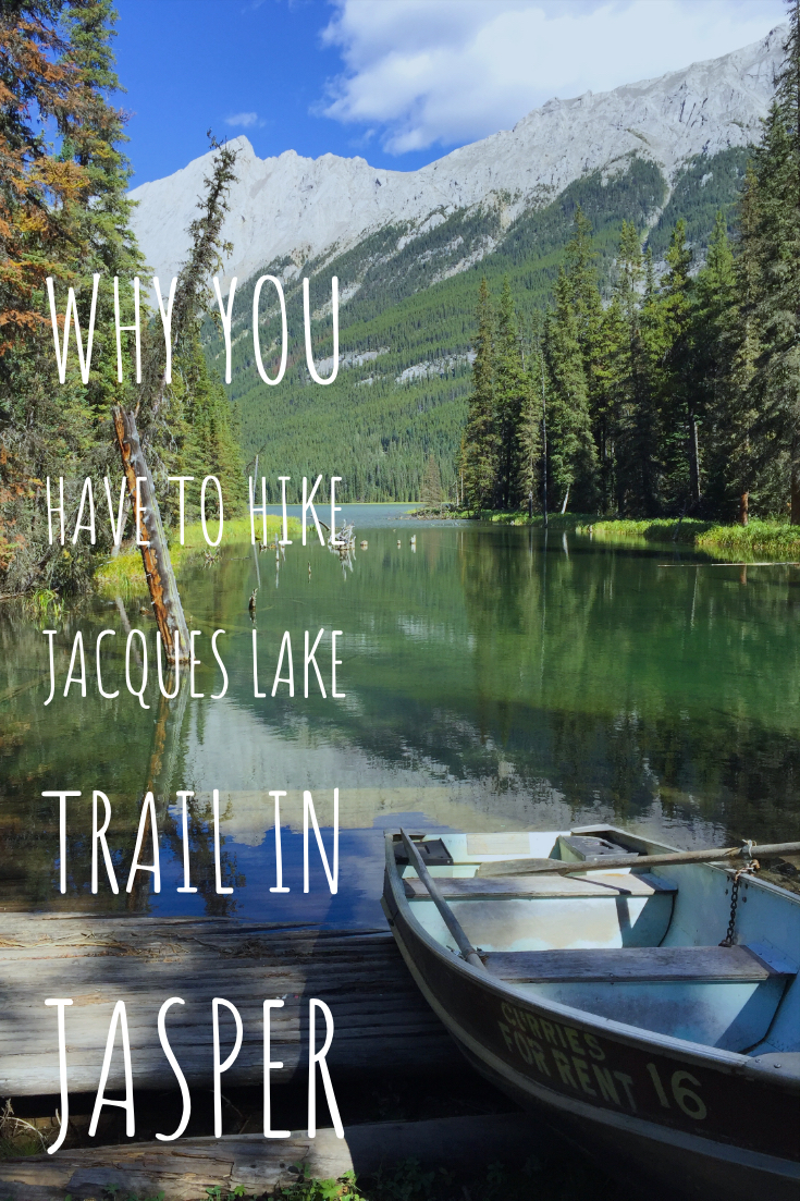Why you have to hike the Jacques Lake Trail in Jasper National Park. Amazing hike to do in the summer!