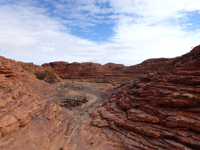 Rolling red rock in Australia's red center