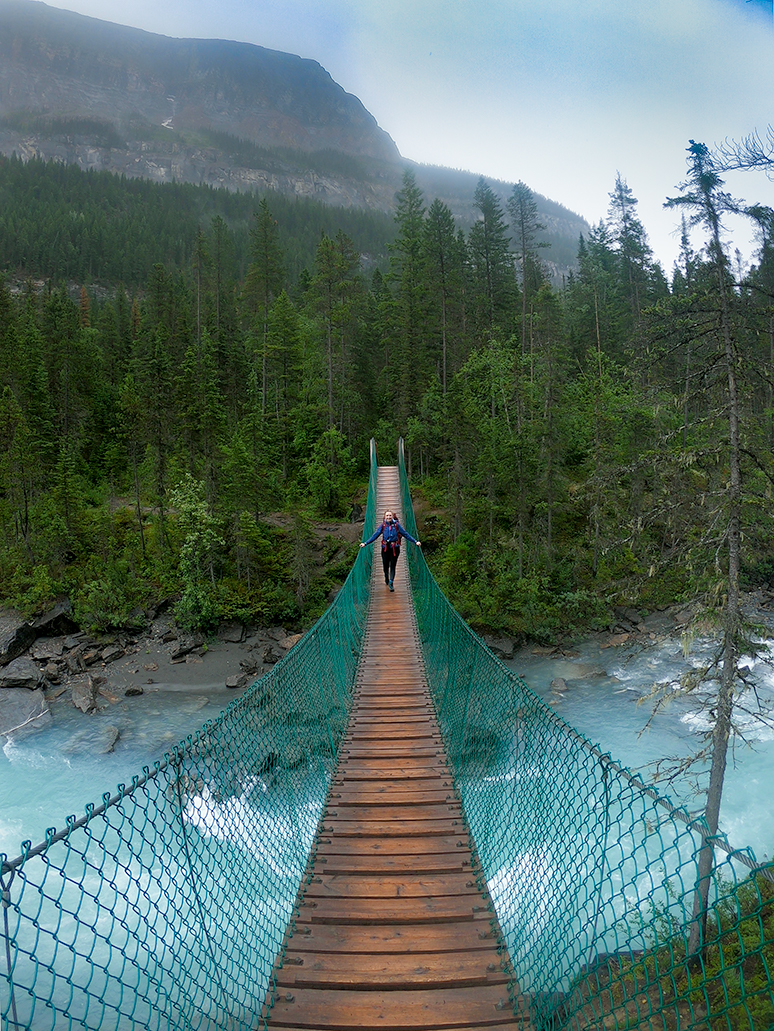 The Berg Lake Trail Suspension Bridge