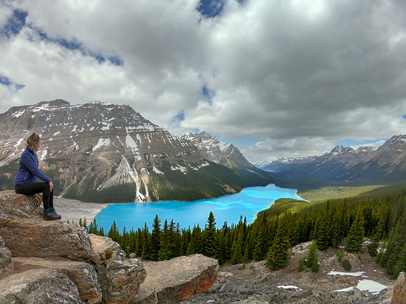 Peyto Lake From the Far Lookout