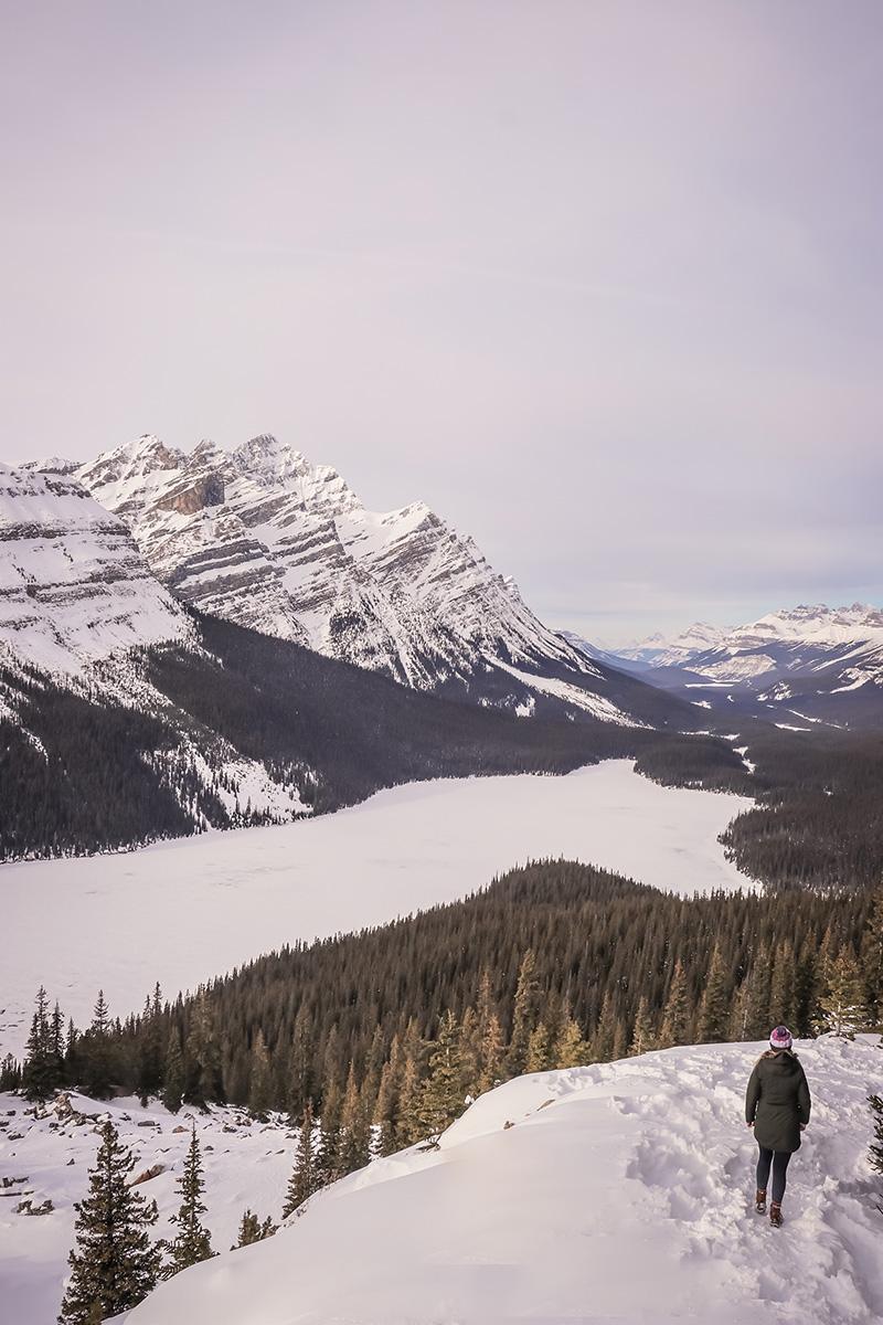Peyto Lake in the Winter!