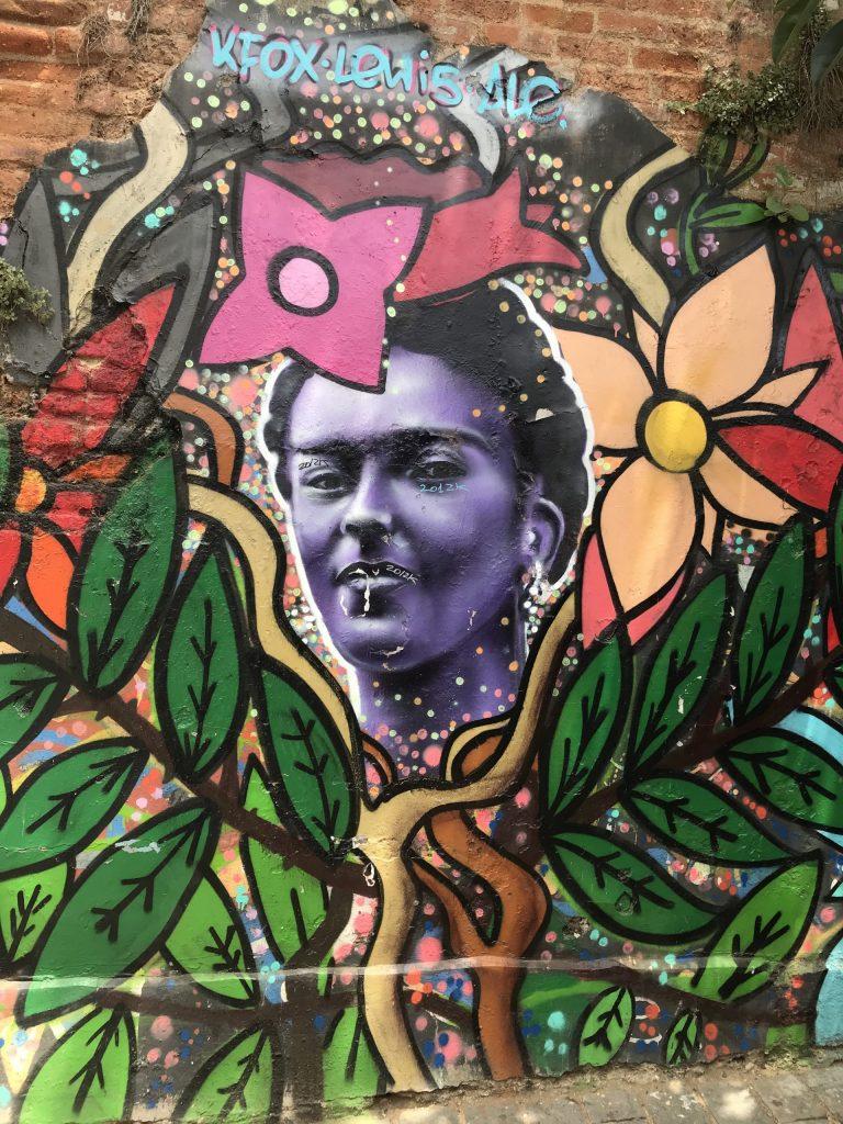 Valparaiso Street Art Frida